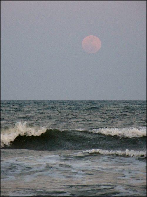 Moon 5.5