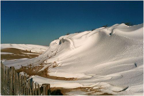 Snowdrift blog