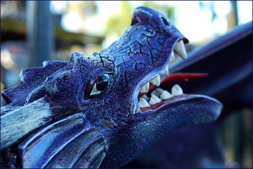 Dragon blog