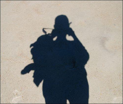 Shadow blog