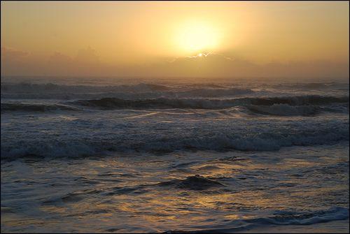 Sunrse520 blog