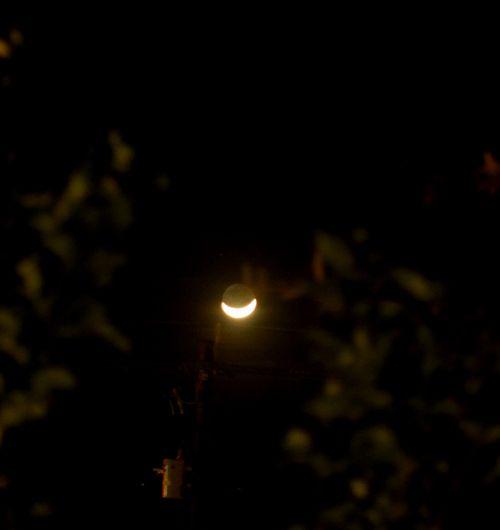 Moonsmile blog1