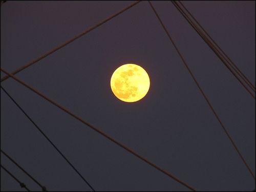 Moon7531#1 blog