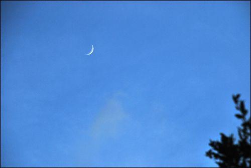 Cheshire moon 140 blog
