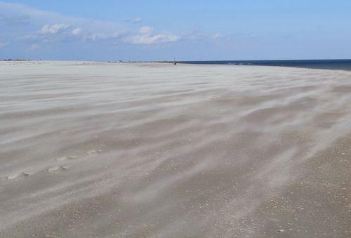 Wind blowng sand blog