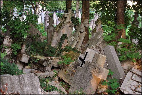 Graves0851 blog