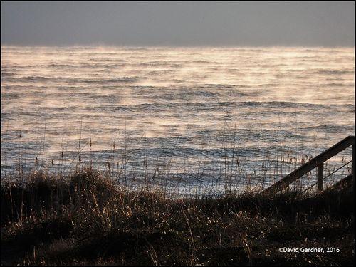 Sea smke4126 blog
