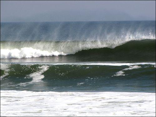 Butifl waves02