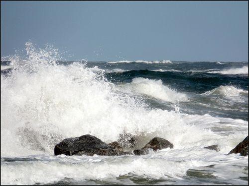 Wld ocean04.17