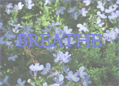 11.3.2020breathe blog