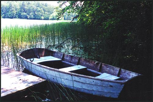 Wellfleet pondblog
